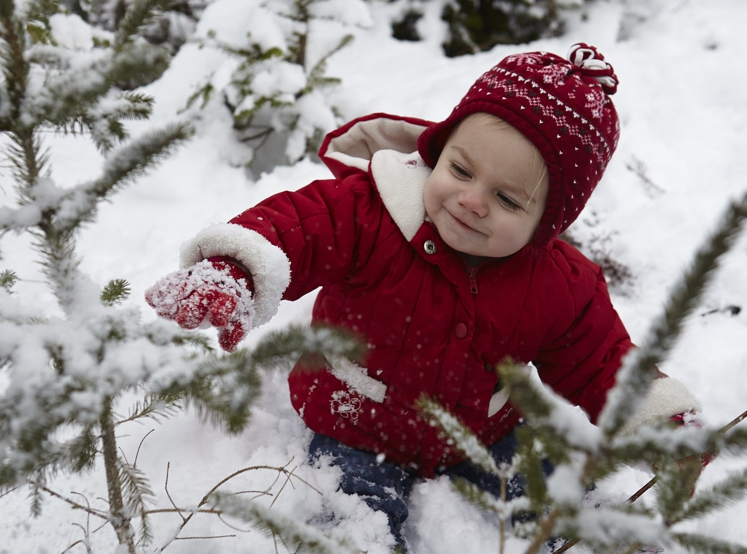 Toddlers Have Knocked Christmas Trees - 5 Tips for Planning Your Child's First Christmas