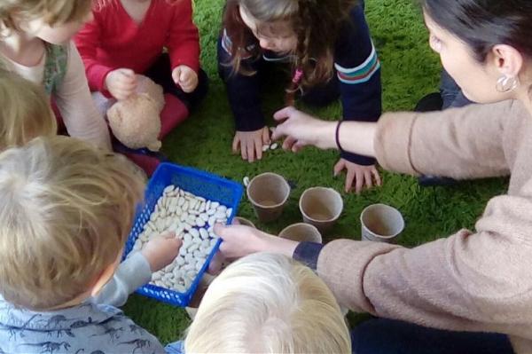 wise owls 600x399 - Best Preschools in United Kingdom Near You